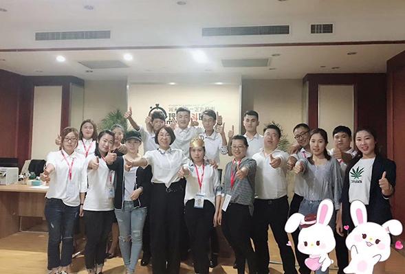 青岛网络优化公司